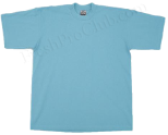 Sky Blue Pro Club T-Shirts (2 T-Shirts)