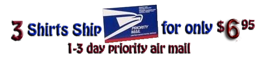 Ship 3 Pro Club T-Shirts priority mail for $5.95.  Pro Club Purple  T-Shirts.